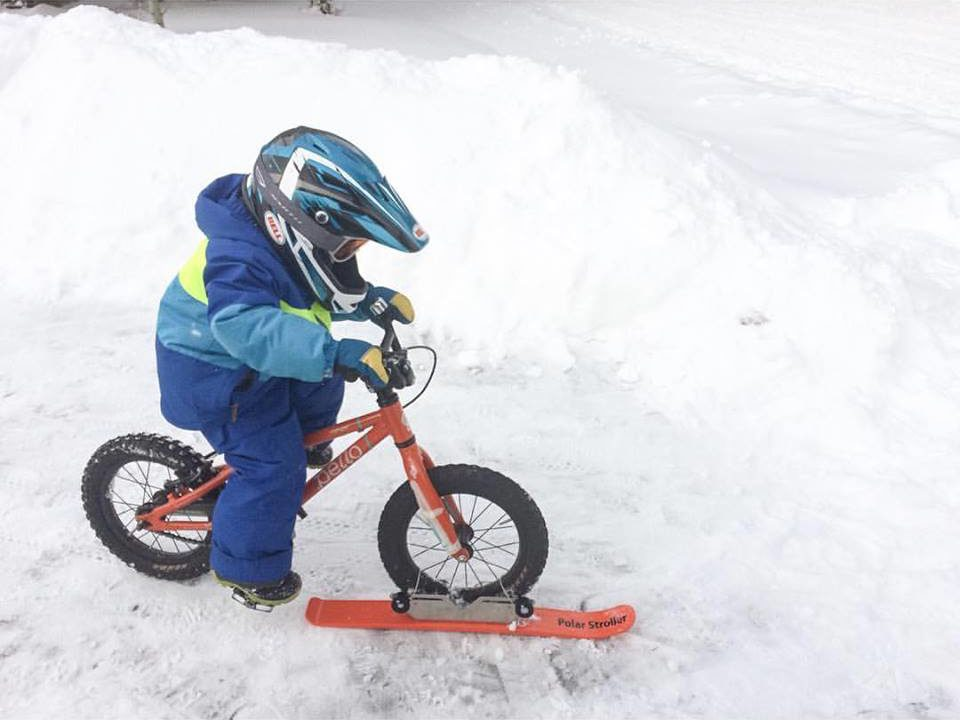 Polar Stroller Ski on Kids Bike