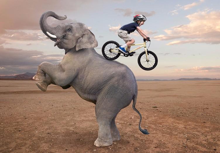 Cleary Kids Bikes