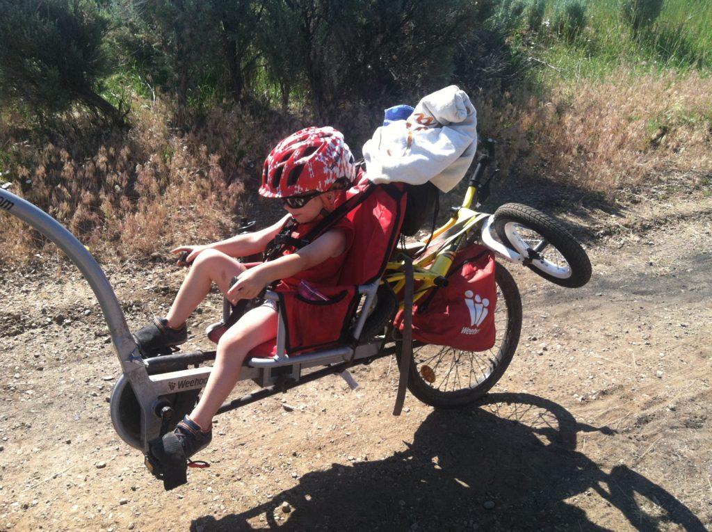 Weehoo Trailer-Cycle