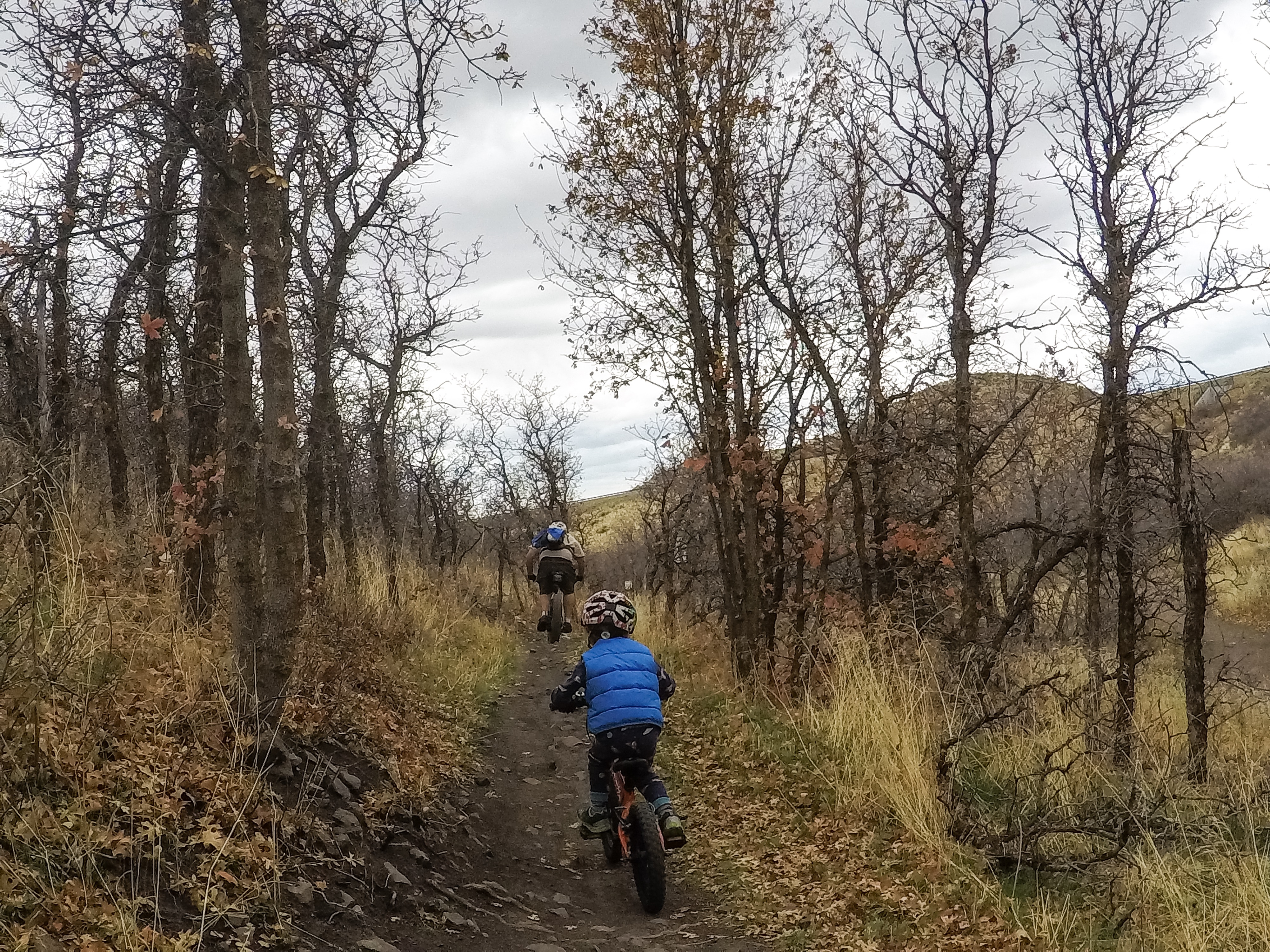 Little Valley Trails