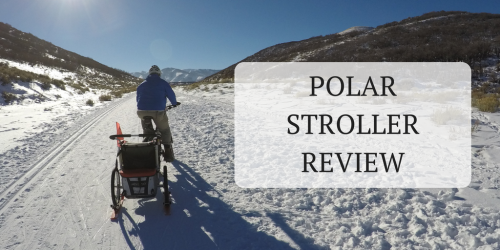 Polar Stroller Review