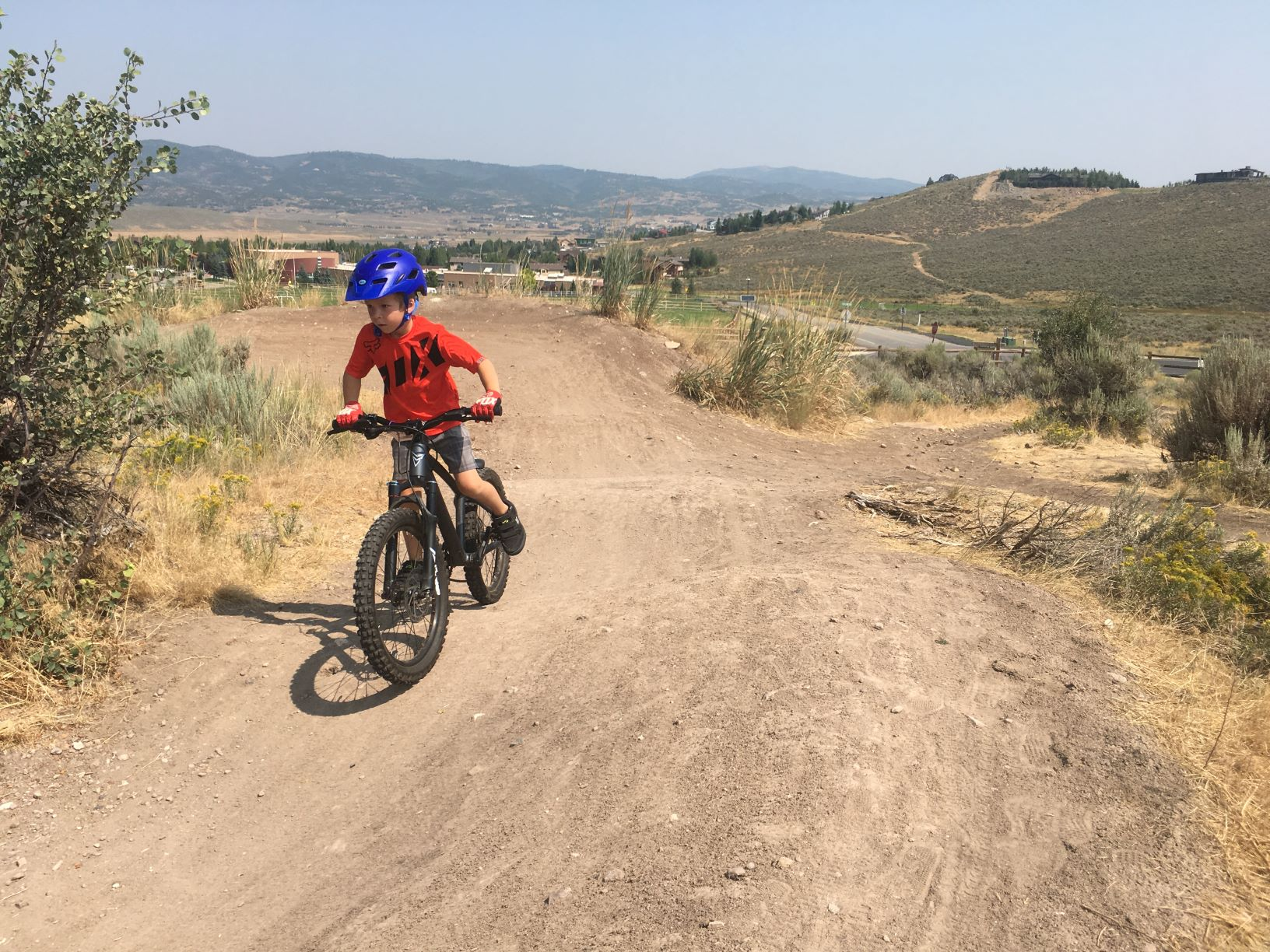 Prevelo Zulu Kids Mountain Bikes
