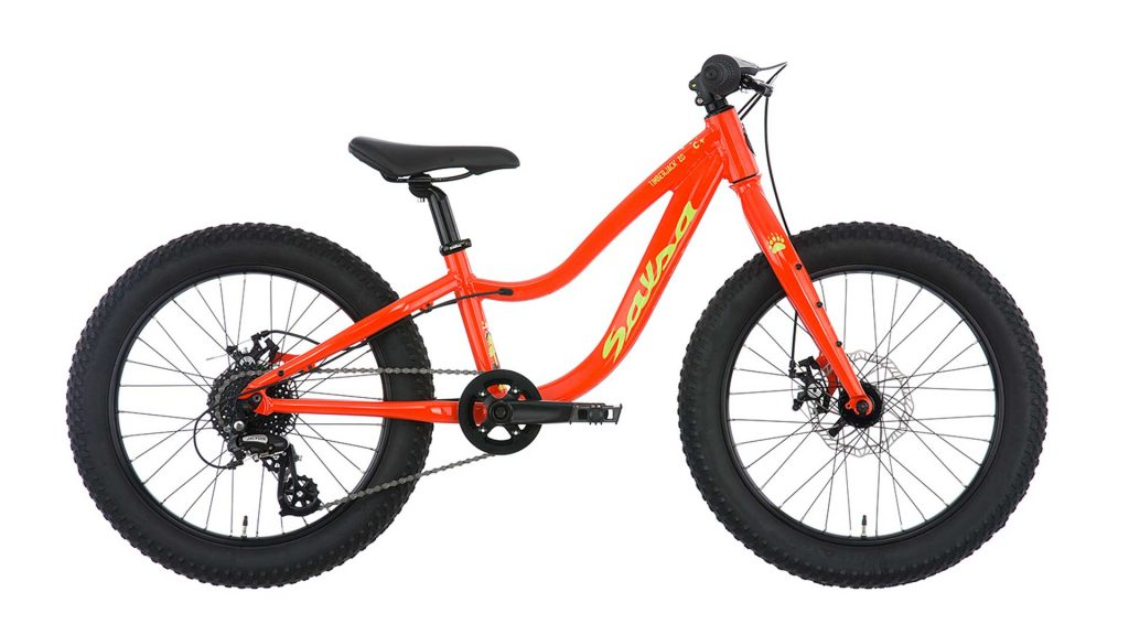 Salsa Timberjack 20 Kids Bike