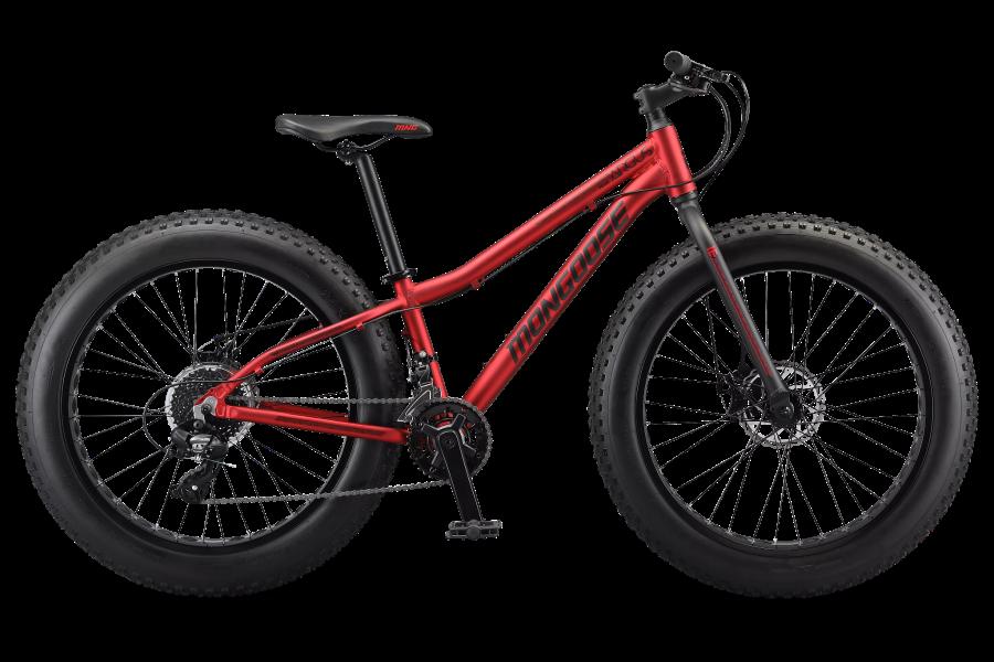 mongoose argus 24 kids fat bike
