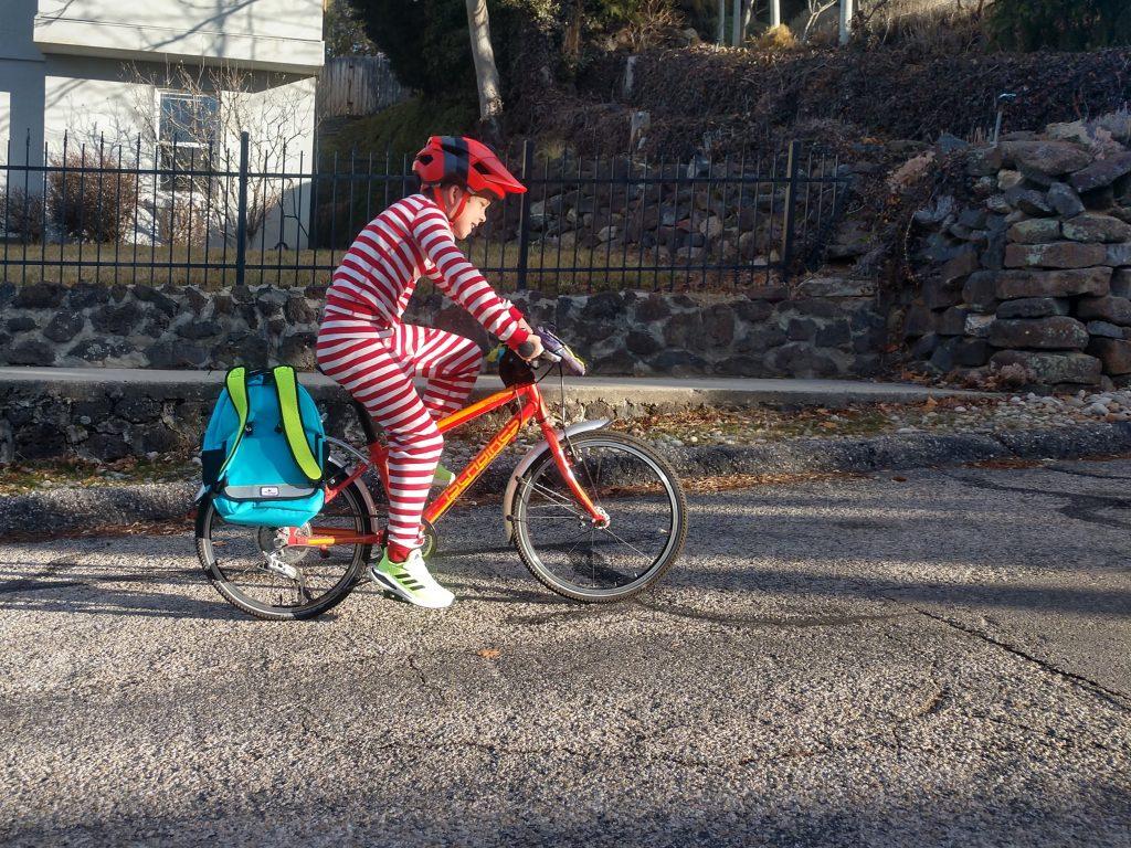 po campo kids bike bags review