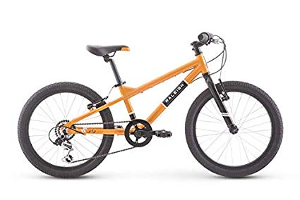 raleigh rowdy boys 20 inch bike