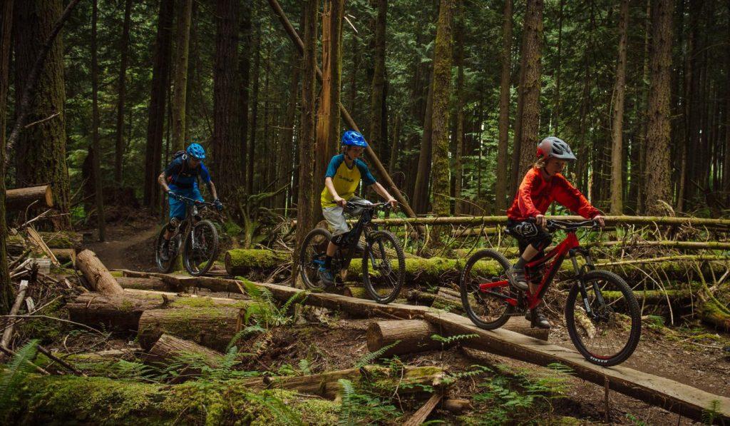 "24"" downhilll mountain bikes for kids"