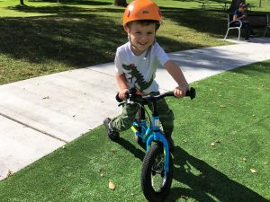 saracen freewheel balance bike off-road