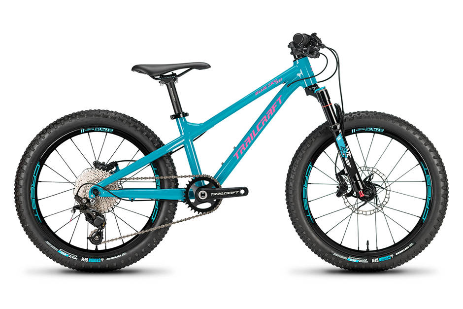 trailcraft blue sky 20 inch mountain bike